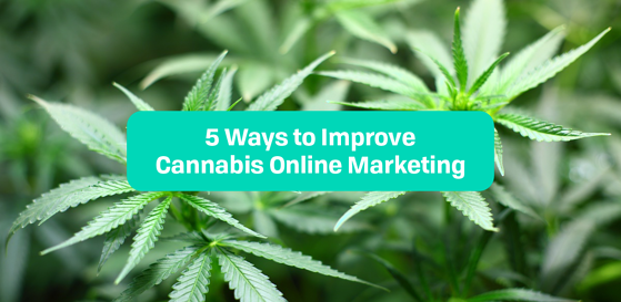 5 Ways to Improve Cannabis Online Marketing