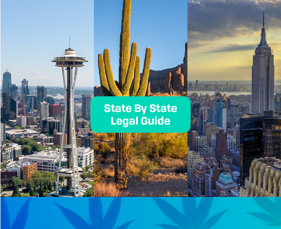 Cannabis State By State Guide Image 2