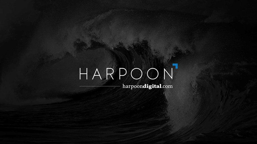 Time Inc.'s MNI Targeted Media Inc. Launches Harpoon, A Digital Media Strategy and Services Group
